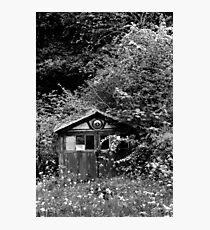 Garage Jungle Photographic Print