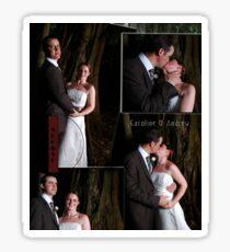Mt Tamborine Wedding Sticker