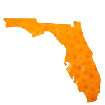 Florida Map of Orange by heby73