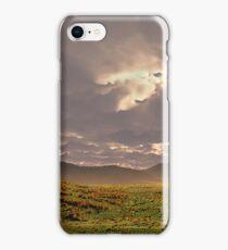 Horse on the Prairie iPhone Case/Skin