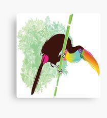 bird angry Canvas Print