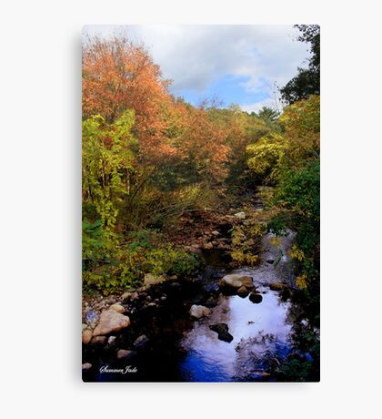 A Country Creek on an October Day Canvas Print
