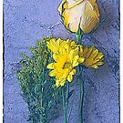 Blue and Yellow # 2 by dwjart