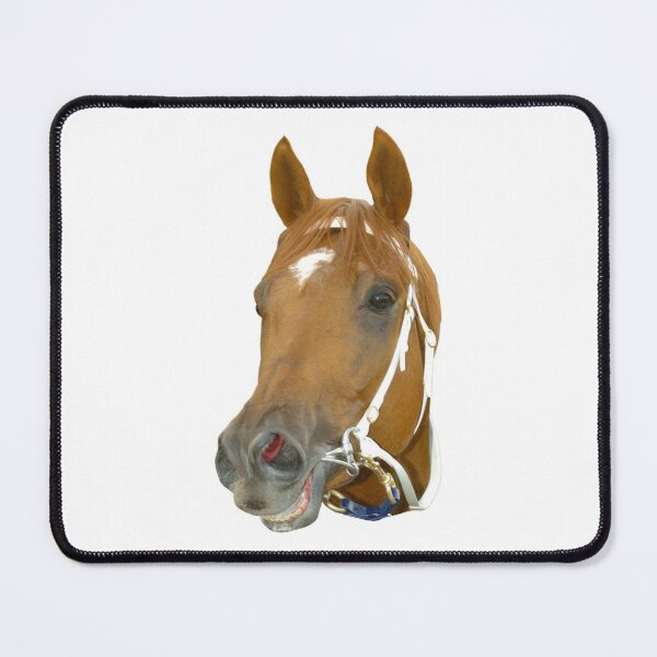 Smiling horse Mouse Pad