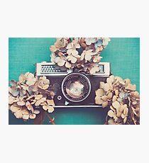 Camera & Hydrangea Photographic Print
