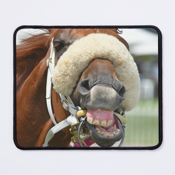 Horse laughing Mouse Pad