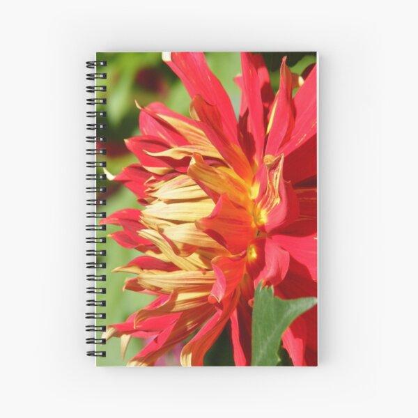 RED YELLOW DAHLIA FLOWER PETALS Spiral Notebook