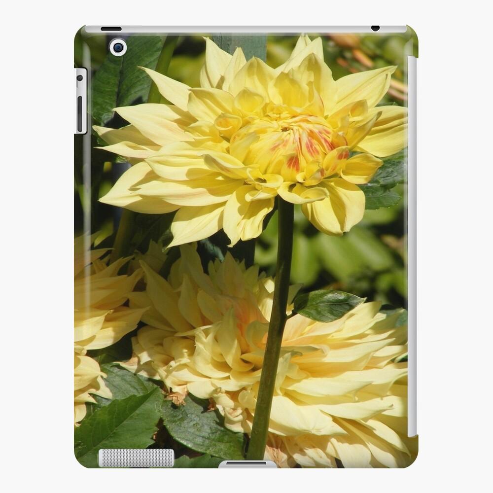 YELLOW DAHLIA FLOWER BLOSSOM PETALS iPad Case & Skin