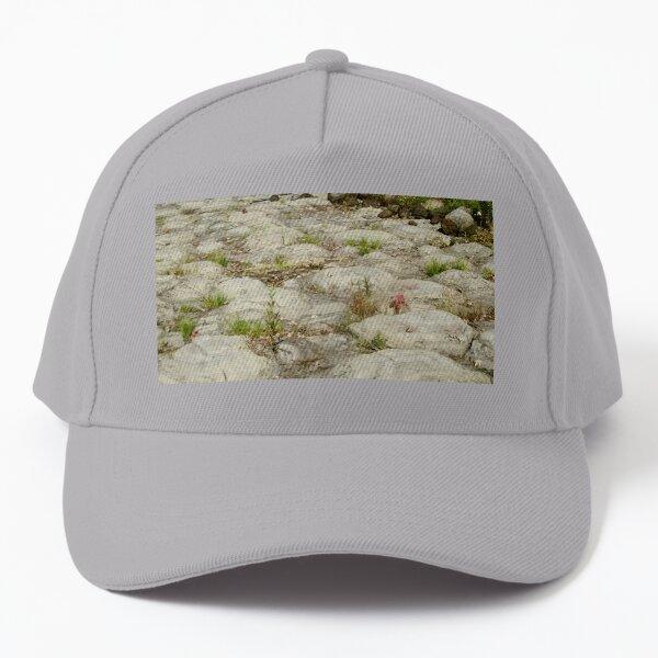 Ancient Stromatolites Baseball Cap