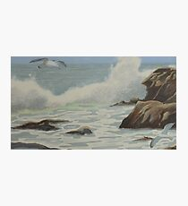 Incoming Tide in Victoria Photographic Print