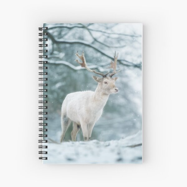 Christmas fallow buck in the snow Spiral Notebook