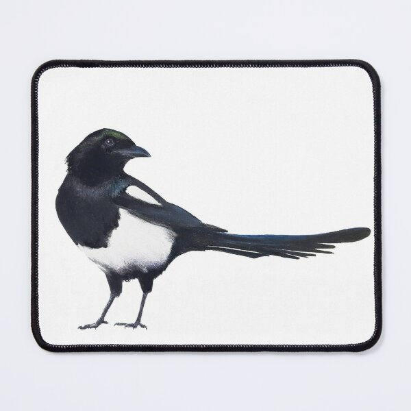 Black-billed magpie - charcoal drawing Mouse Pad