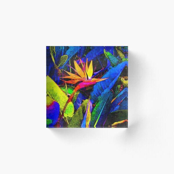 Colorful Bird of Paradise Flower and Leaves Acrylic Block
