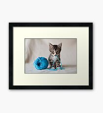 Rocket and the yarn Framed Print