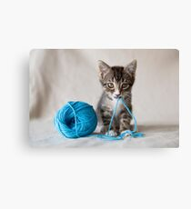 Rocket and the yarn Canvas Print