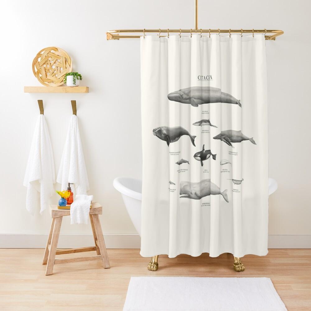 Cetacea Shower Curtain