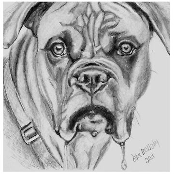 Drooling Big Dog by jmac64