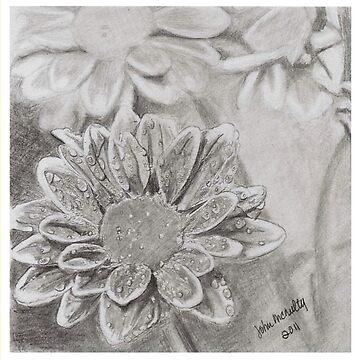 Rain Flower by jmac64