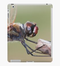 Dragonfly Macro iPad Case/Skin