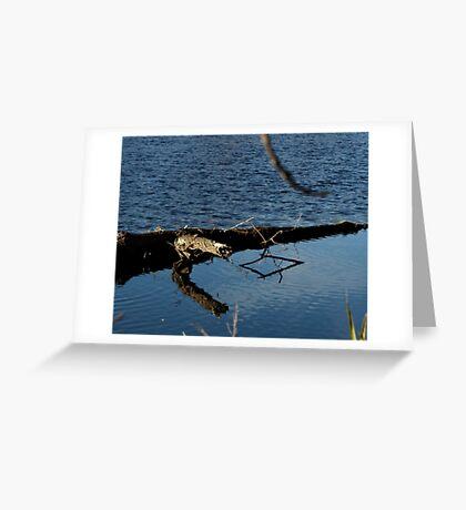 Reflecting Shapes Greeting Card