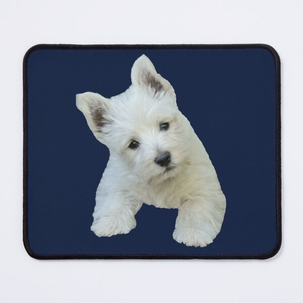 West Highland White Terrier Puppy portrait 3 Mouse Pad