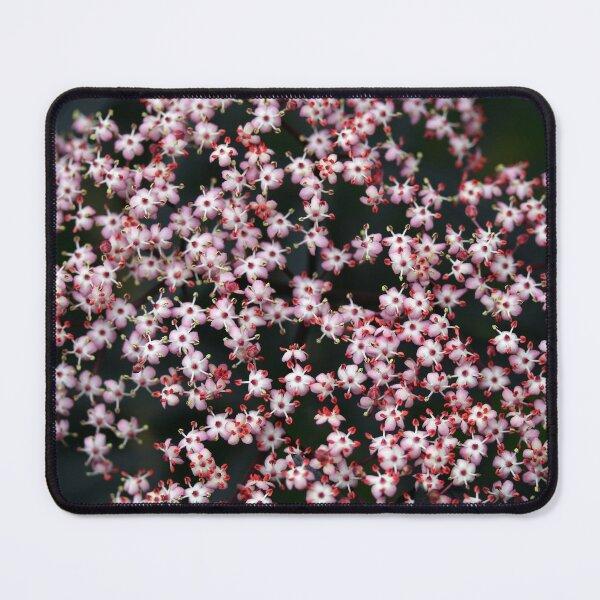 Flowers of the Sambucus nigra  Mouse Pad