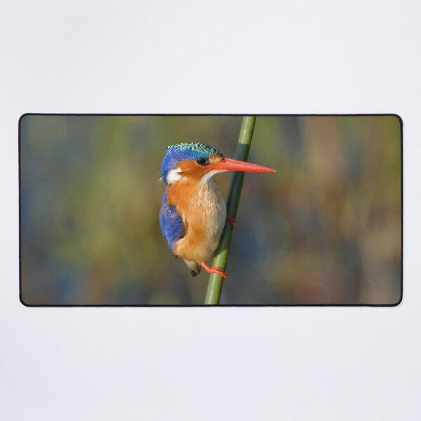 Malachite Kingfisher Desk Mat