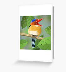 Banded Kingfisher Bird Greeting Card
