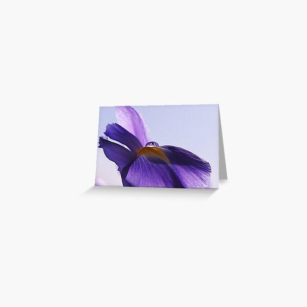 Iris Water Droplet Greeting Card
