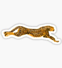 Running Leopard Cheetah Cat Sticker