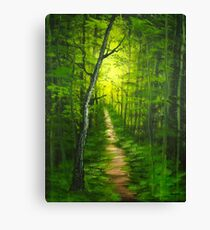 Trails of Olympic National Park Canvas Print