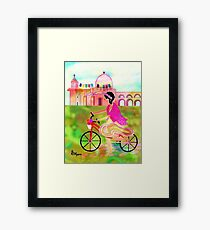 Do You Know Your Way To San José? Framed Print