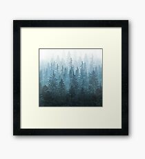 My Misty Secret Forest Framed Print