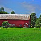 Vermont's iconic symbol by Nancy Richard