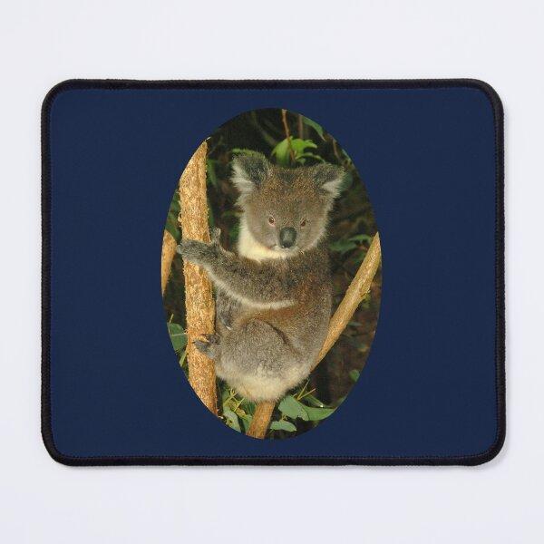 Koala in tree Mouse Pad