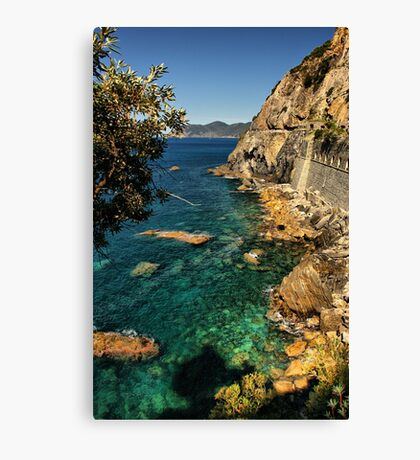 Ligurian Coast Canvas Print