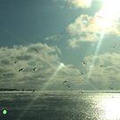 Ocean Mist by Briana Ross
