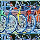 The Bicycle Shop, Bikes in a Row, Bicycle Picture by RDRiccoboni