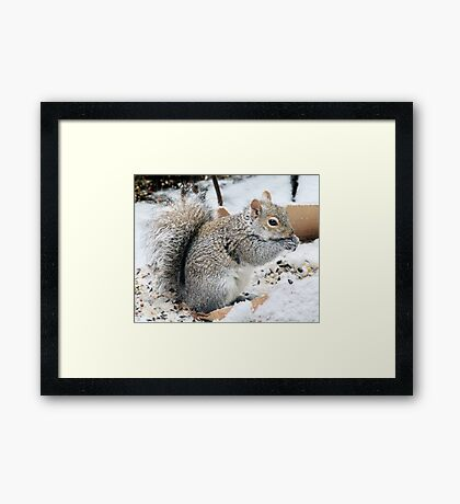 Snows of the Equinox Framed Print