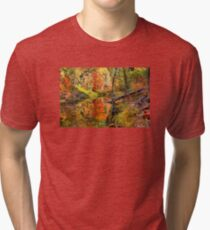 Fairytale Autumn Tri-blend T-Shirt