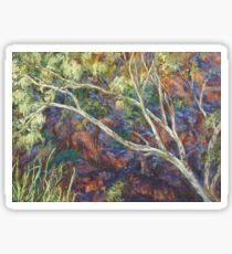 River red gum at Ellery Creek Waterhole Sticker