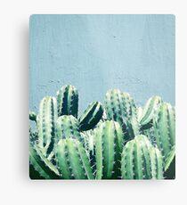 Cactus & Teal #redbubble #lifestyle Metal Print