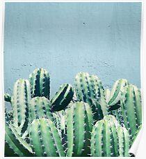 Kaktus u. Knickente #redbubble #lifestyle Poster