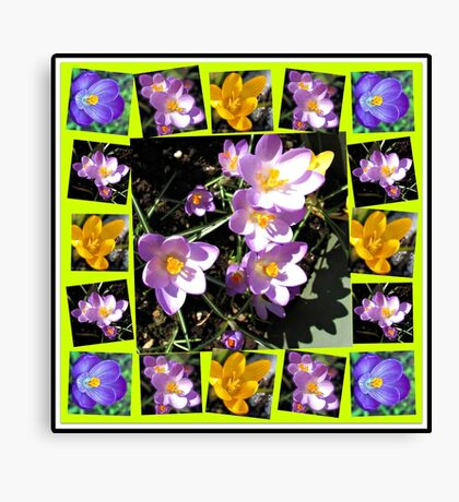 Cute Crocuses Collage Leinwanddruck