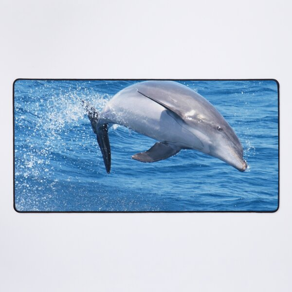 Joyful Bottlenose dolphin  Desk Mat