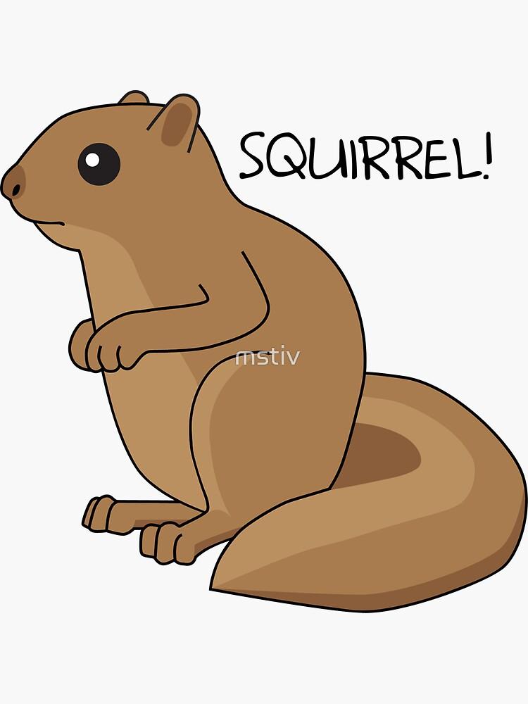 Squirrel Is Squirrel by mstiv