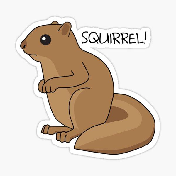 Squirrel Is Squirrel Sticker