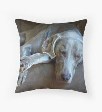 Sleepy Weimaraner Throw Pillow