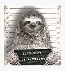 Sloth in a Mugshot Photographic Print