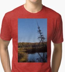 Of Tree Bones and Swamps -  Tri-blend T-Shirt